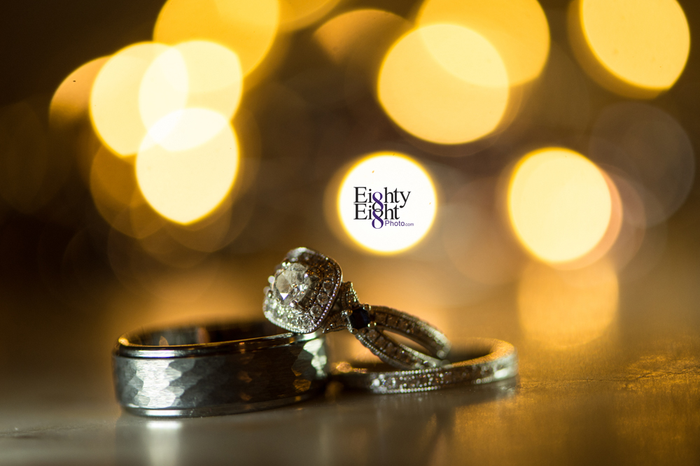 Eighty-Eight-Photo-Photographer-Photography-Cleveland-Ohio-The-Old-Courthouse-Wedding-Ceremony-Bride-Groom-Unique-Wedding-Party-Wade-Lagoon-Downtown-Beautiful-52