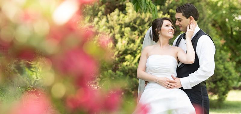 Megan & David Wedding